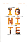 Ignite: Setting Your Organization's Culture on Fire with Innovation